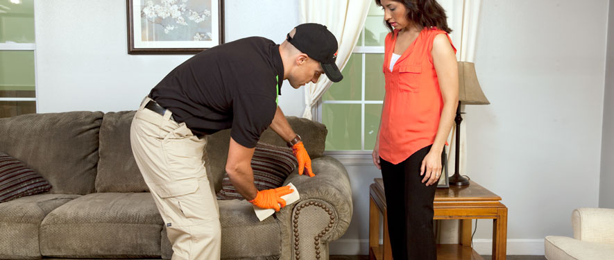 Durango, CO carpet upholstery cleaning